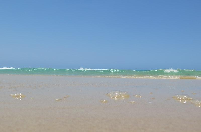 Mooloolaba Beach shore